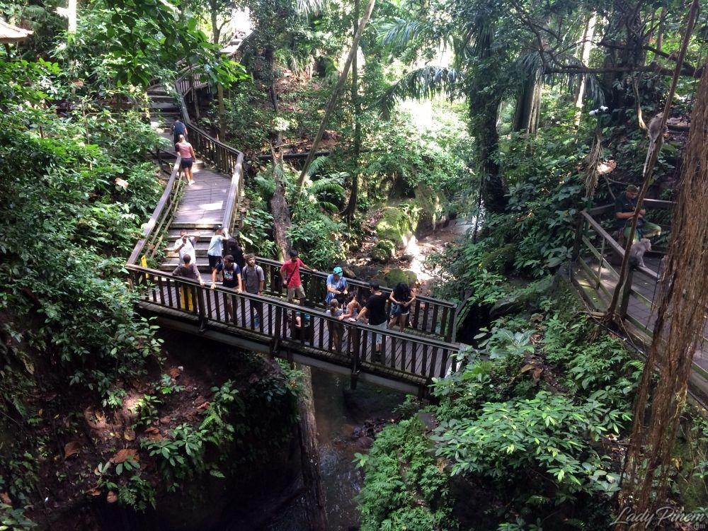 Sacred Monkey Forest Sanctuary Ubud Bali - 4