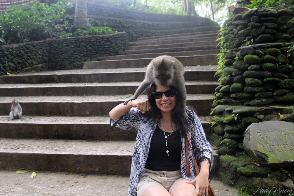 Sacred Monkey Forest Sanctuary Ubud Bali - 6