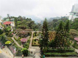 Nature - English Garden in Resorts World Genting 1