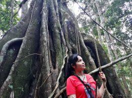 Resorts-World-Genting-Rainforest-Fashion-Forest-6