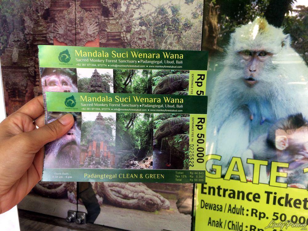 Sacred Monkey Forest Sanctuary Ubud Bali - 2