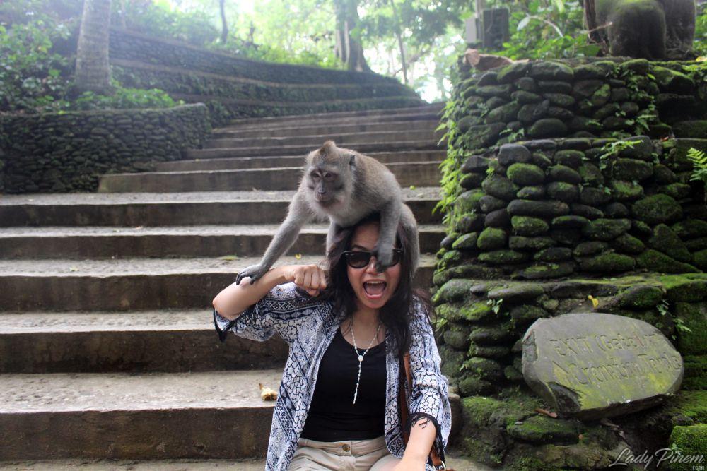 Sacred Monkey Forest Sanctuary Ubud Bali - 7
