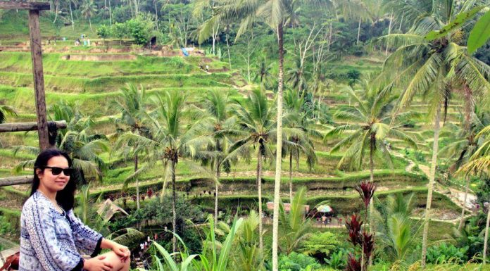 Tegallalang Rice Terrace Bali - 2